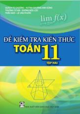 Đề kiểm tra kiến thức Toán 11 - tập 2
